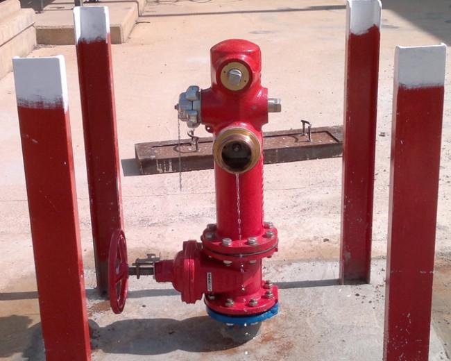 Sustitución hidrantes